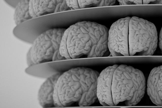 Будущее мозга
